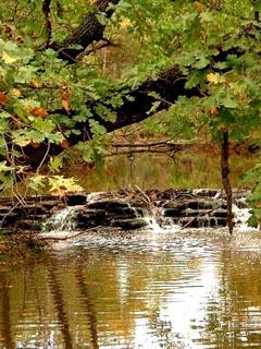 Ruisseau04.jpg